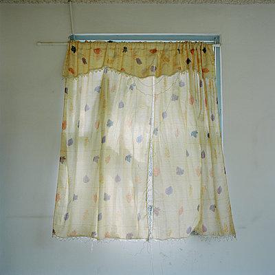 Window - p1021m932448 by MORA