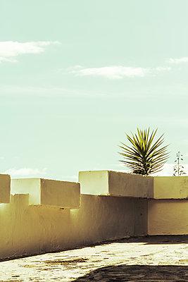 Dachterrasse im Sonnenschein - p1255m1152855 von Kati Kalkamo