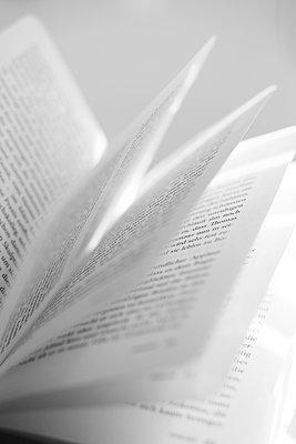 geöffnetes Buch - p1325m1465017 von Antje Solveig