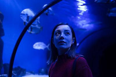 Caucasian woman admiring fish in aquarium - p555m1504154 by Dmitriy Bilous