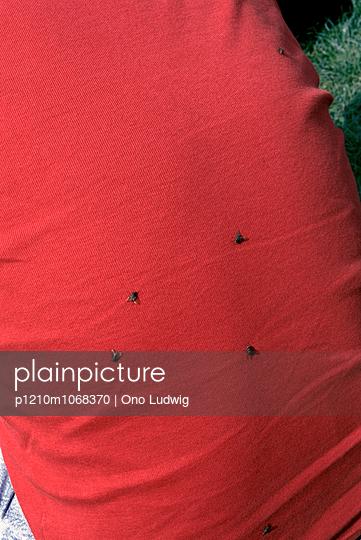 Malé - p1210m1068370 by Ono Ludwig