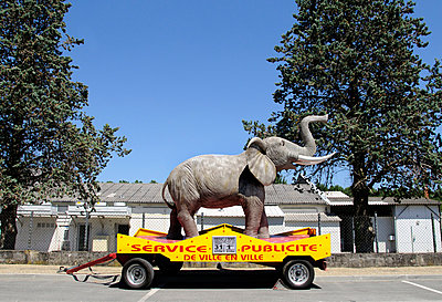 Model elephant by roadside advertising circus  - p1072m829445 by Neville Mountford-Hoare