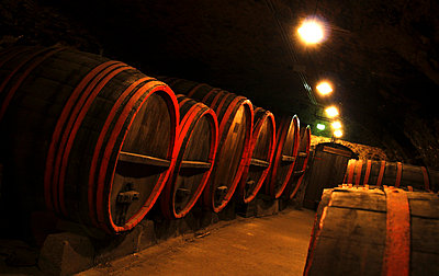 Champaign cellars - p7720031 by bellabellinsky