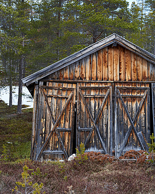 Shack - p1124m1133113 by Willing-Holtz