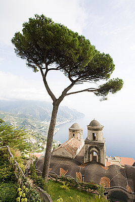 Church and tree in ravello - p9246206f by Image Source