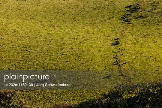 Cornwall - p1202m1162109 von Jörg Schwalfenberg