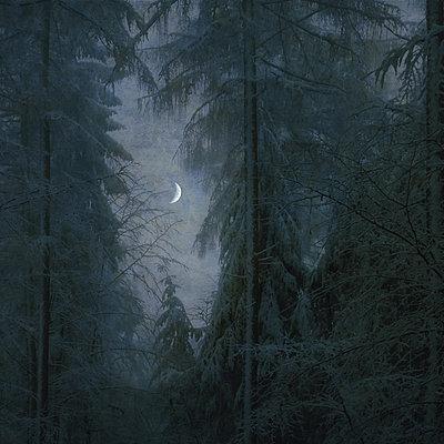 Silent Night I - p1633m2208990 by Bernd Webler