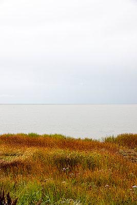 Herbststimmung an der Ostseeküste - p248m1067821 von BY