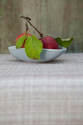 Fresh from the tree - p454m739718 by Lubitz + Dorner