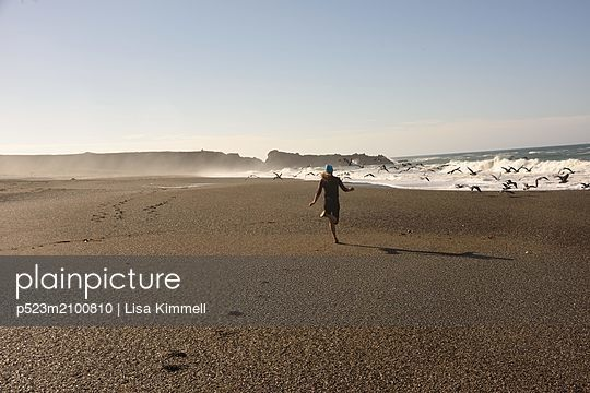 bodega bay - p523m2100810 by Lisa Kimmell