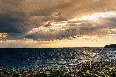 Germany, Ruegen, coast and Baltic sea under cloudy sky - p300m2005480 von Jana Mänz