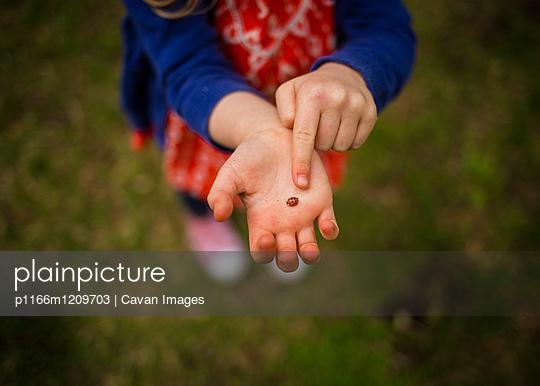 p1166m1209703 von Cavan Images