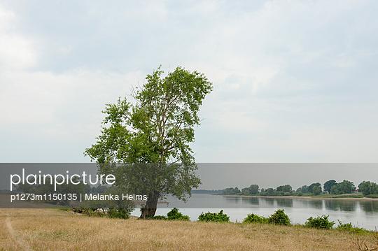 Flusslandschaft - p1273m1150135 von melanka