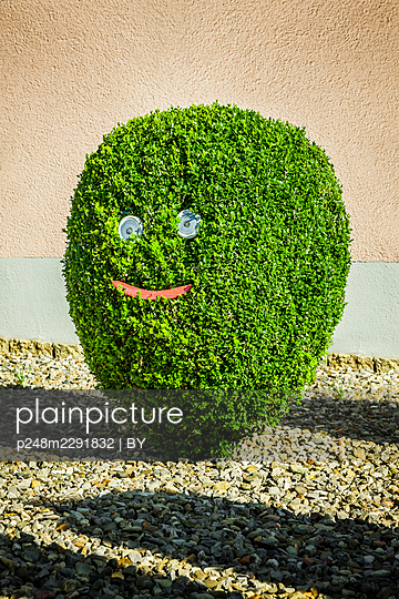 Kleiner Buchsbaum mit lustigem Gesicht aus Holzdekoration - p248m2291832 von BY