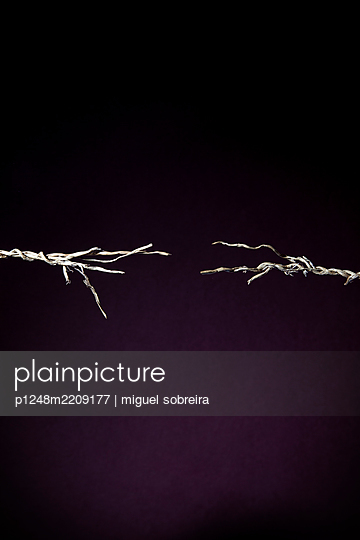 Ripped cord  - p1248m2209177 by miguel sobreira