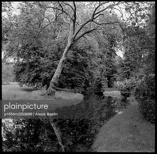 Landscape - p1654m2253699 by Alexis Bastin