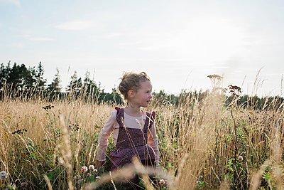 portrait of a young girl sitting in a meadow at sunset in summer - p1166m2137965 by Cavan Images
