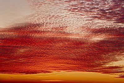 Red coloured clouds at sunset. Sweden.  - p34812729 by Svenne Nordlov