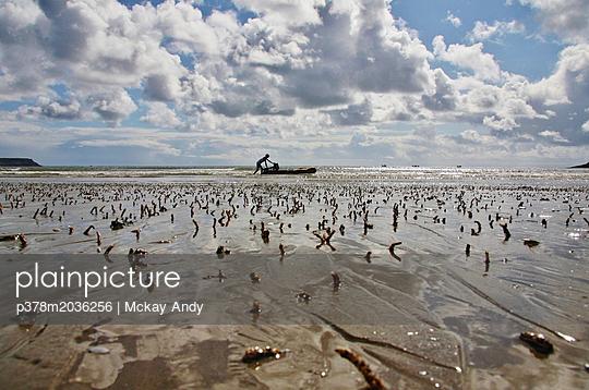 p378m2036256 von Mckay Andy