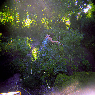 Woman watering plants with hose in vegetable garden - p1072m829415 by Neville Mountford-Hoare