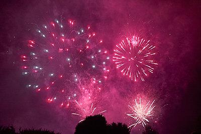 Fuchsia Fireworks in the night sky  - p1096m2063669 by Rajkumar Singh