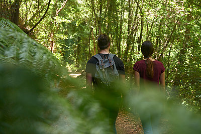 Spain, Canary Islands, La Palma, rear view of couple walking through a forest - p300m2062213 by Pablo Calvo