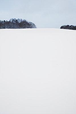 Winter - p1006m891468 von Danel