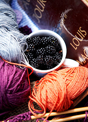 Knitting wools and blackberries;  Isle of Wight;  UK - p349m920048 by Rachel Whiting