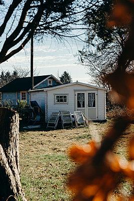 Verlassene Holzhütte - p432m2064431 von mia takahara