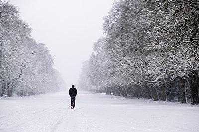 Spaziergang im Schnee - p1057m2057287 von Stephen Shepherd