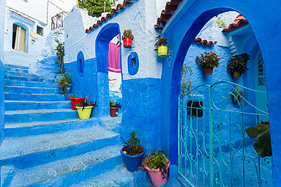 Morocco, Chefchaouen, Blue painted houses exteriors at a stairway - p1332m2204590 by Tamboly