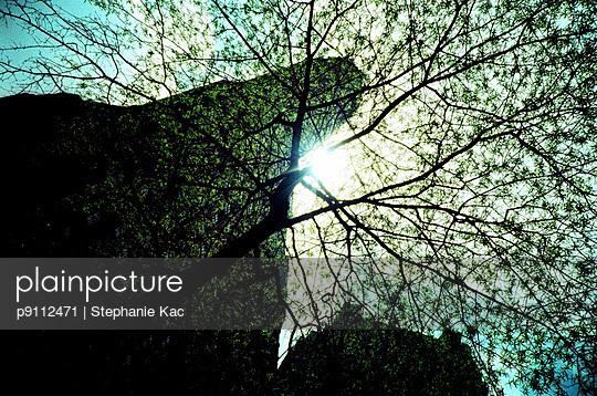 Skyscraper - p9112471 by Stephanie Kac