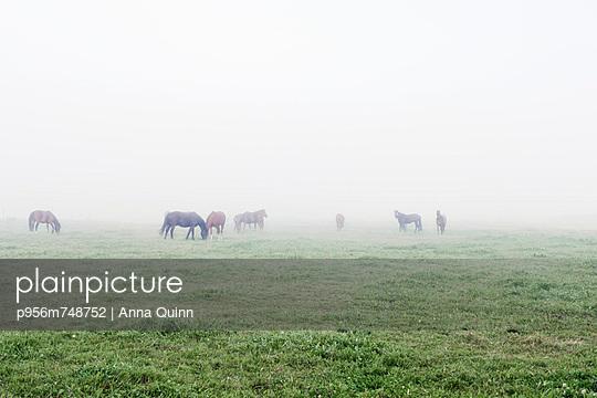 Sunrise - p956m748752 by Anna Quinn