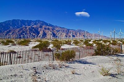 Windmills in the desert - p1399m1528885 by Daniel Hischer