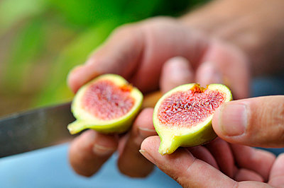 Figs - p8850183 by Oliver Brenneisen
