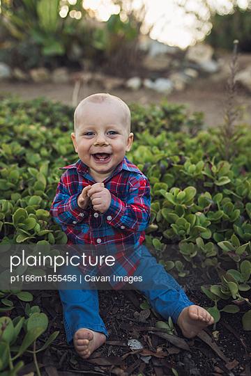 p1166m1555456 von Cavan Images