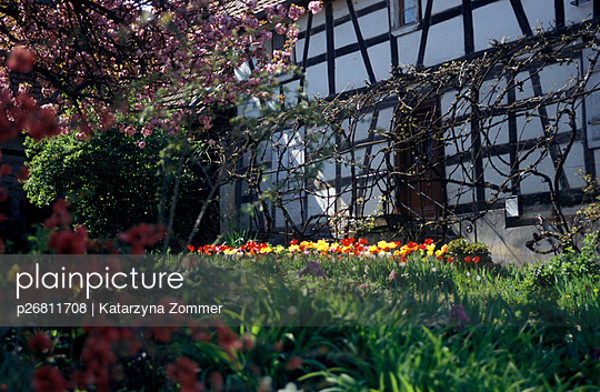 Half-timbered house - p26811708 by Katarzyna Zommer