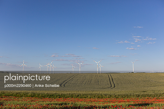 Countryside field in summer with wind turbines in background - p300m2290460 by Anke Scheibe