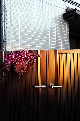 Einfamilienhaus - p1271m1553174 von Maurice Kohl