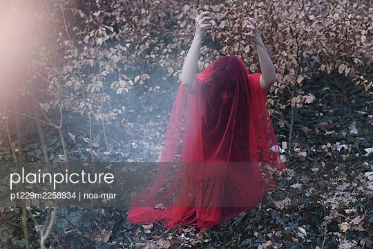 Woman in red dress and veil in the forest - p1229m2258934 by noa-mar