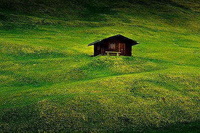 Berghütte auf grüner Wiese - p248m669084 von BY