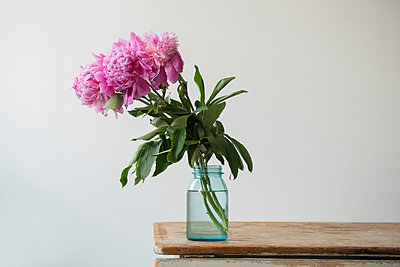 Pink flowers in jar on table - p555m1304463 by JGI/Jamie Grill