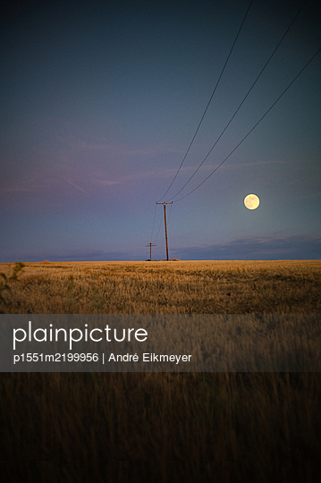 Full moon over cornfields with power lines  - p1551m2199956 by André Eikmeyer