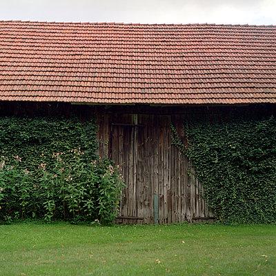 Barn - p989m939846 by Gine Seitz