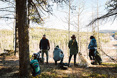 Friends with dogs hiking in sunny woods - p1192m2094005 by Hero Images