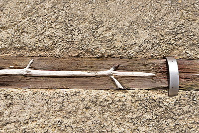 Verwittertes Baumstück - p192m1200537 von Holger Pietsch