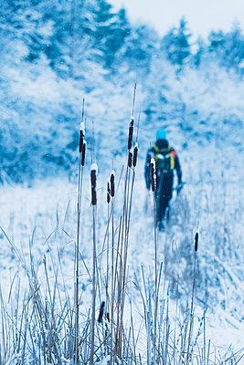 Man walking at winter - p312m1103684f by Hans Berggren