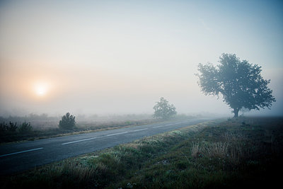 Nebel - p829m972340 von Régis Domergue