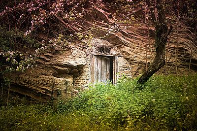 Hidden door 3 - p1007m853048 by Tilby Vattard