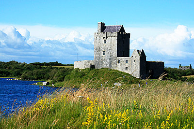 Dunguaire Castle, Kinvara, County Galway, Ireland - p4429473f by Design Pics